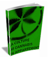 L 39 ebook la culture du cannabis en appartement livre for Livre culture cannabis interieur pdf
